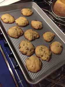 We ate homemade cookies for dessert last night during Cam's TED talk